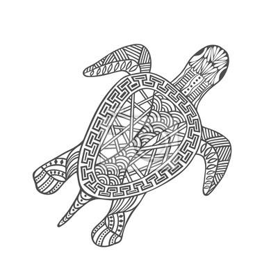 tortue a contours noir dessine a la main sur fond blanc ornement images myloview