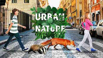 Urban Nature: scopri la natura urbana di Roma con eventi gratuiti insieme a WWF
