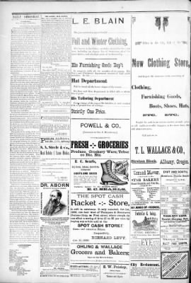 Albany Daily Democrat From Albany Oregon On November 3 1890 Page 2