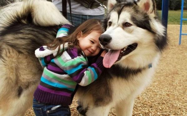 Подборка милых фотографий детей и собак. ФОТО