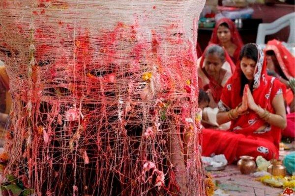 Почему мужчинам в Индии приходиться жениться на деревьях? ФОТО