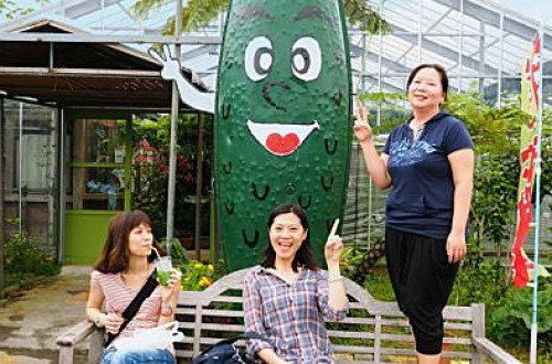 【沖繩】ゴーヤーパーク 苦瓜觀光農場 苦瓜冰淇淋、苦瓜汁超讚!