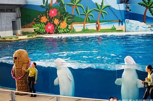 日本、橫濱|八景島 東京近郊的人工島海洋樂園
