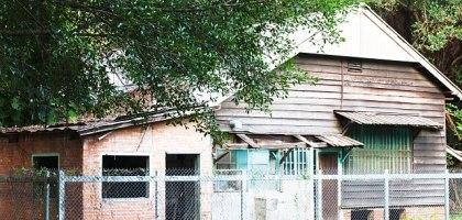 雲林、虎尾|舊糖廠宿舍 荒廢的青田街一號