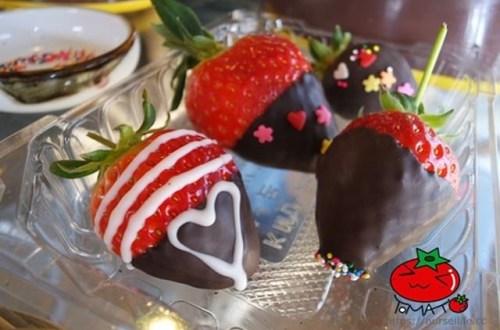 韓國、京畿|韓國旅遊新玩法 來去首爾郊區「兩水」體驗採草莓、製作草莓巧克力