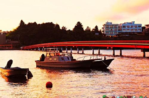 日本、宮城|松島–福浦島 夕陽下漫步島嶼美景隨拾