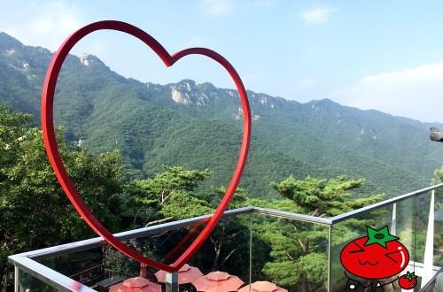韓國、大邱|八公山纜車+桐華寺園區–我在山上遇見愛