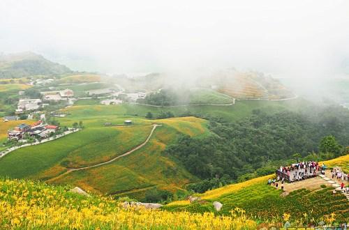 花蓮、富里|六十石山.在天空之城一覽被染黃的大地