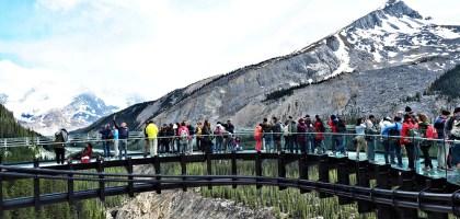 加拿大|冰川天空步道 Glacier Skywalk.懼高限定的腿軟之旅