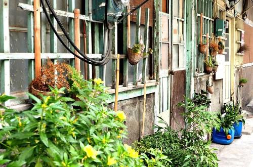 台南|在巷弄巧遇美麗的風情