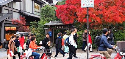 京都 嵐山楓葉季限定.京馬車、保津川遊船、漫步天龍寺、美足按摩