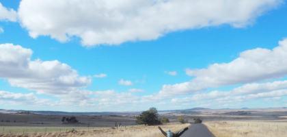 澳洲|雪梨自駕自由行:租車資訊、坎培拉玻璃屋早午餐