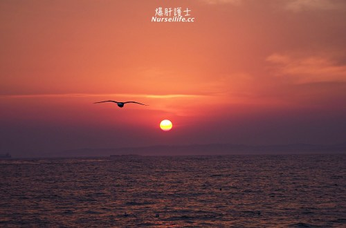 北海道旅遊航線新選擇!關西飛釧路再一路玩到新千歲!