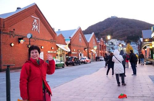 第一次帶媽媽到北海道自駕旅行就上手