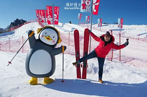 首爾48小時瘋狂快閃!滑雪、購物、吃美食,回家前再拍個證件照