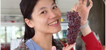 好吃的日本珍珠葡萄