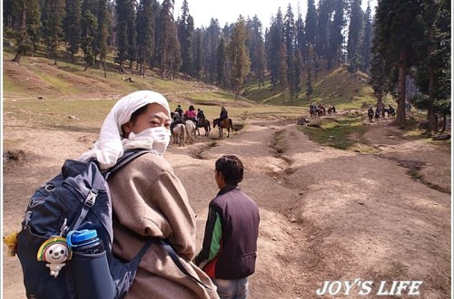 【印度】Pahalgam騎馬趣Kashmir Valley篇