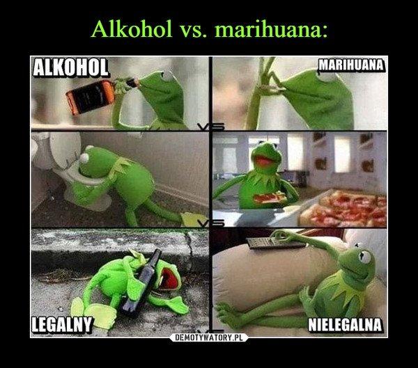 Alkohol vs. marihuana: - Obrazkowo.pl - najlepsze memy w sieci.