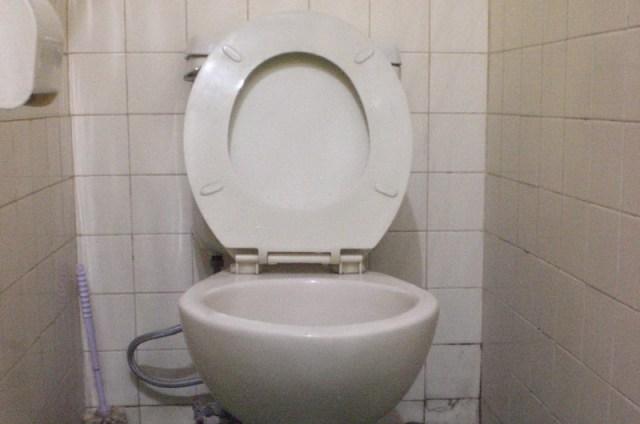 Cara Praktis Mengatasi WC Mampet Terbuki Ampuh