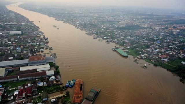 Sungai Kapuas Tercemar, Perkembangbiakan Red Arwana Terganggu : Okezone News