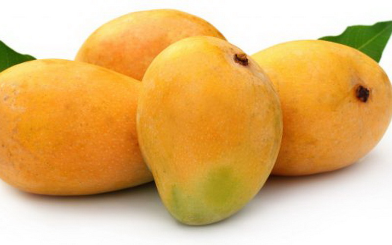 Hasil gambar untuk buah mangga