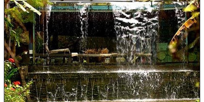 【府城漫步食記】天然A尚好~恣意悠遊綠野鄉間:新化。大坑休閒農場