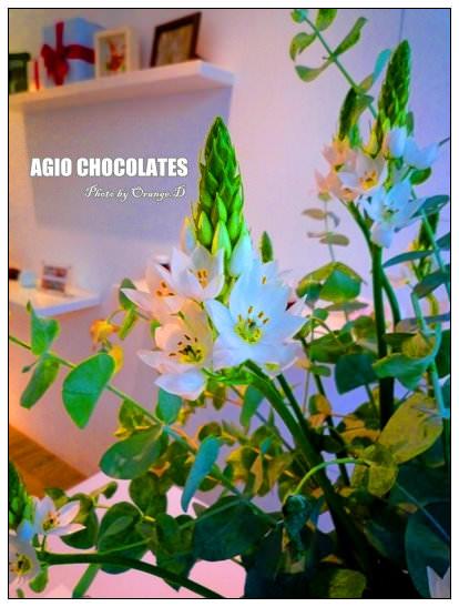 【台中好好吃】夏戀酸甜:AGIO Chocolates三訪