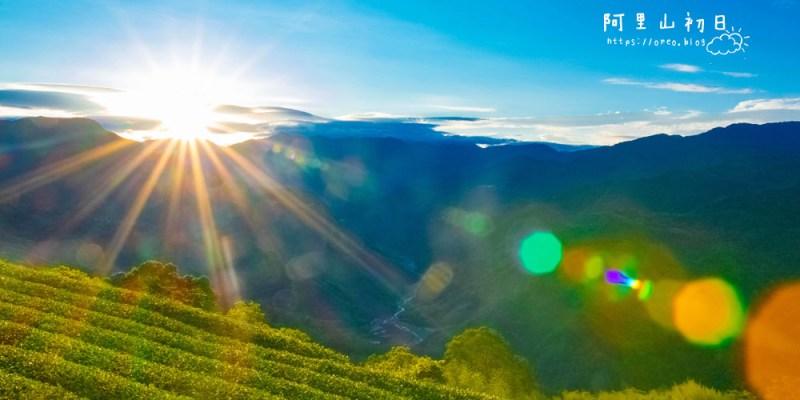 阿里山民宿推薦│阿里山初日試住心得~在民宿旁就能看日出(免爬山)~還有二十隻萌貓陪伴!!!有豐盛的早餐~可一泊二食
