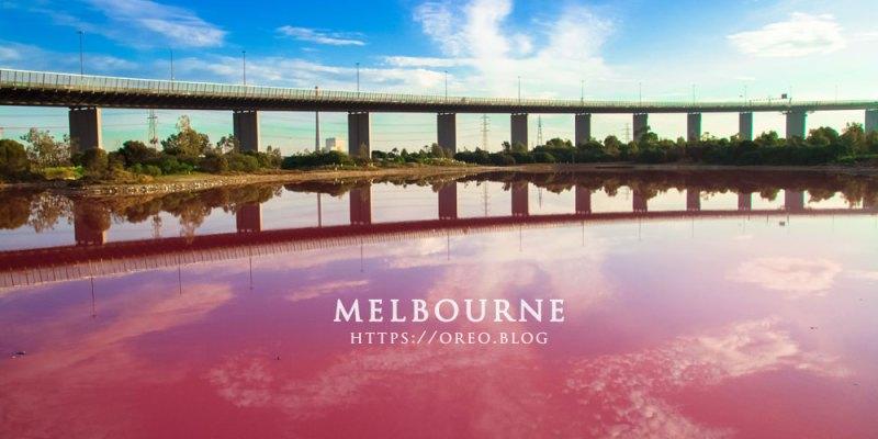 澳洲墨爾本│夢幻粉紅湖~上帝打翻的調色盤~離市區近又有海的療癒景點