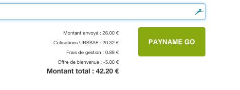 Payname : payer du service ou entre particulier n'a jamais été aussi simple [ttc]