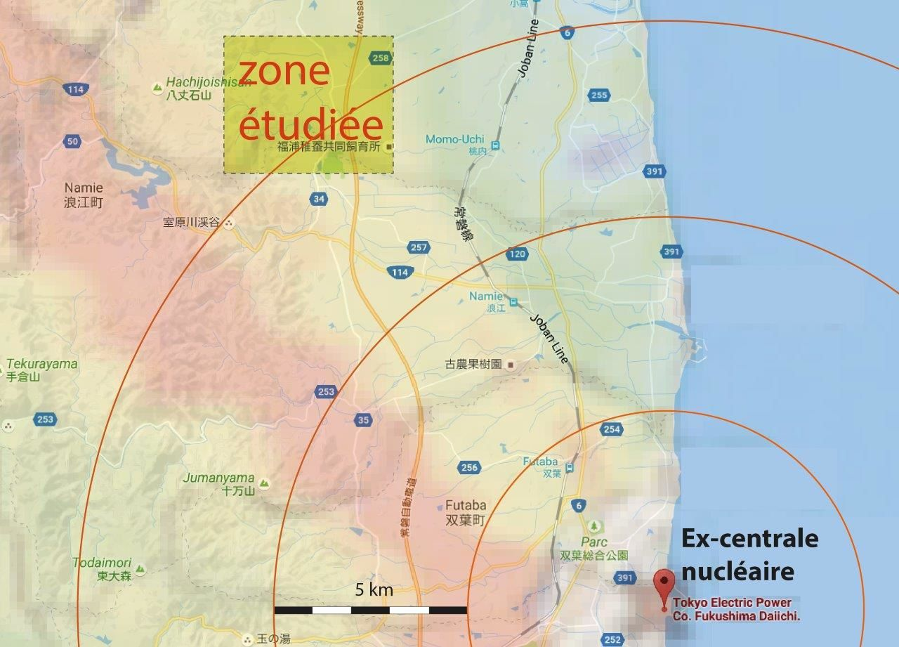 Situation de la zone étudiée