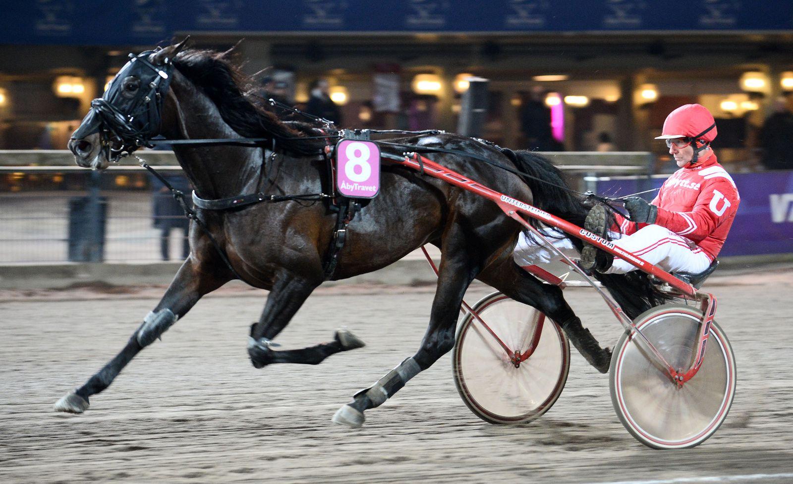 Quinté mardi à Vincennes : Kash Brodda vient pour gagner !