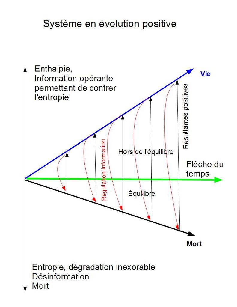 Ce système, hors de l'équilibre a une tendance résultante à la complexification vers une vie meilleure . Il est soumis à de multiples itérations de régulations qui s'opposent à l'entropie.