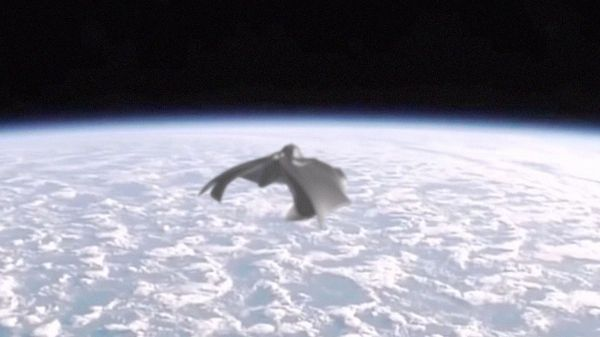 Clear pictures of the BLACK KNIGHT UFO satellite