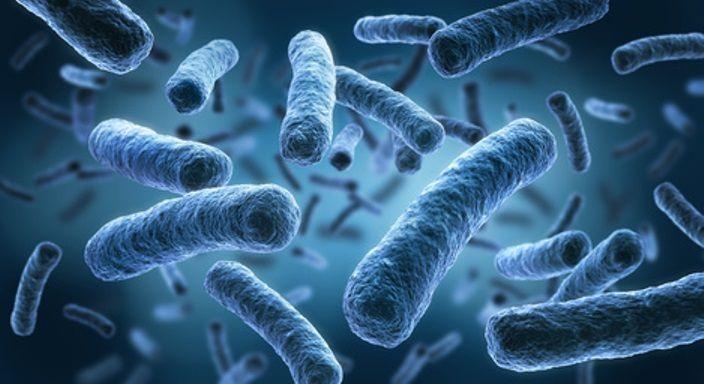 Infectiologie: l'obsession d'éradication des germes est contre-productive