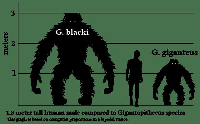 Quand des pointures scientifiques affirment que des géants peuplaient la Terre… !
