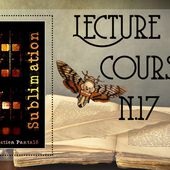Lecture en cours #17 - Chroniques des mondes hallucinés
