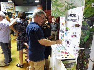 L'exposition [En]quête d'insectes à la MJC d'Onet-Le-Château (12)