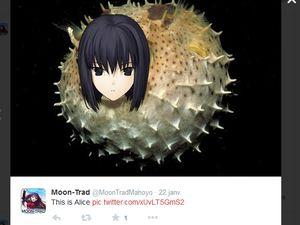 Alice la FUGU ! :3
