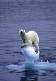 Les climato-sceptiques sont des scientifiques.