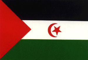 Le Bureau du Secrétariat national du Front Polisario profondément préoccupé par la détérioration de la santé des prisonniers politiques sahraouis en grève de la faim