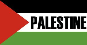Israël approuve 560 nouvelles maisons dans une colonie de Cisjordanie