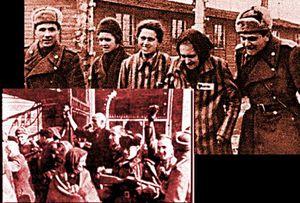 Auschwitz libéré par l'armée rouge