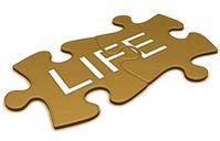 life_puzzle.jpg