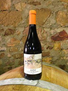 Vin-Icone