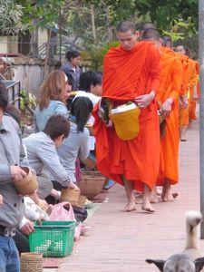 http://www.familledufs.com - NORD DU LAOS - Un matin, nous nous sommes levés à 6h pour observer un rituel quotidien : des bonzes pieds nus vêtus de la robe safran qui arpentent les rues de la ville, les fidèles remplissent leurs bols à aumône de boulettes de riz gluant. (Les moines réaffirment leurs vœux de pauvreté et d'humilité, tandis que les bouddhistes augmentent leur mérite spirituel par ce don respectueux).