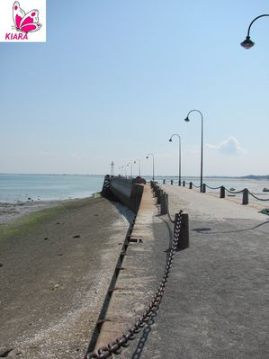Cancale 2338