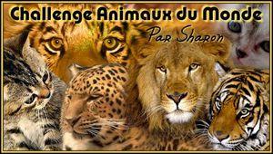 Logo Sharon