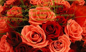 bouquet-de-roses42-copie-1.jpg