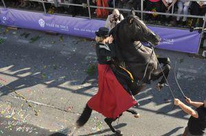 Bataille-de-Fleurs-22022012-104--c-Brigitte-Lachaud-.JPG